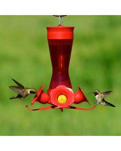 Perky-Pet 4 Flower Glass Hummingbird Feeder