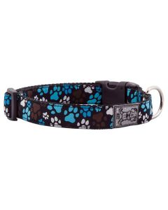 RC Pets Clip Collar