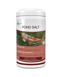 Aquascape Pond Salt [2lb]