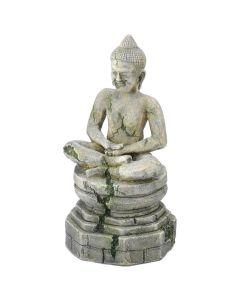 Aqua Della Buddha Statue