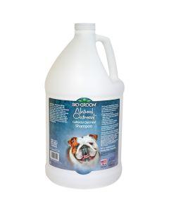Bio-Groom Natural Oatmeal Colloidal Oatmeal Shampoo [1 Gallon]