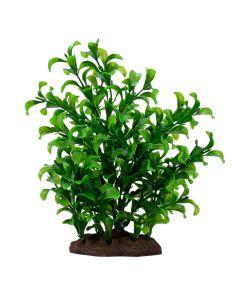 Fluval Aqualife Bacopa Plant [Large]