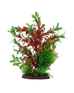 """Fluval Aqualife Red Ludwigia/Dwarf Sagittarius Plant [8""""]"""