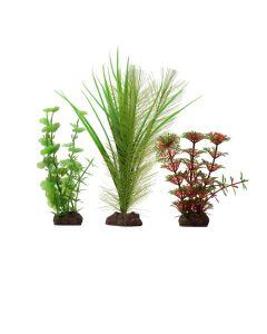 "Fluval Aqualife Red Limnophila 3 Pack [4-8""]"