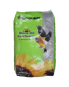 Scoular Black Oil Sunflower (16kg)