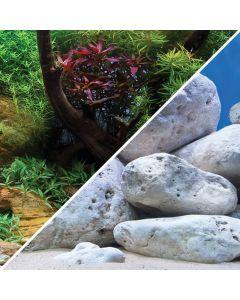 Marina Aqua Garden / Bright Stone Background