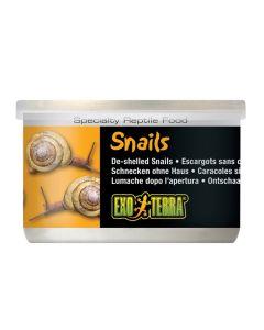 Exo Terra Snails [48g]