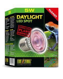 Exo Terra Daylight LED Spot Nano [5W]