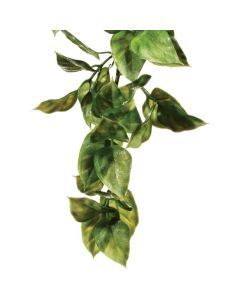 Exo Terra Amapallo Plant
