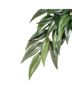 Exo Terra Rucus Plant Medium