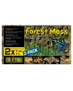 Exo Terra Forest Moss (500g)